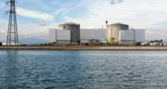 """Охлаждение """"Фукусимы"""" прекратили из-за мертвых крыс"""