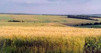 Украина вошла в десятку стран, где наиболее привлекательно покупать землю
