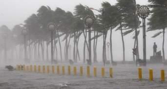 Підсумки 2013 року: стихійні лиха, які сколихнули світ
