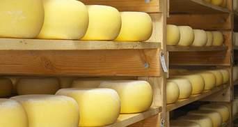 Через претензії з боку Росії експорт українського сиру скоротився на 41%, – експерти