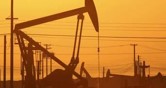 """Компания """"семьи"""" Януковича мечтает помогать Украине добывать газ, — СМИ"""