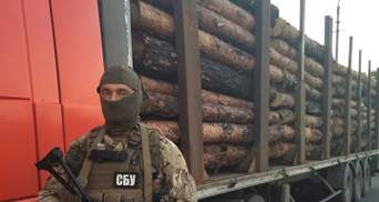 """Машини з контрабандою """"не доїхали"""" до пункту призначення на Луганщині, — Тука"""