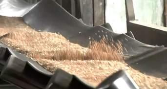 Переорієнтація із СНД на Північну Корею: українські аграрії збільшили експорт зерна