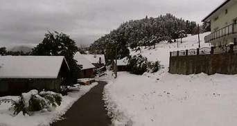 Аномальна весна: Словенію засипало снігом — вражаючі кадри стихії