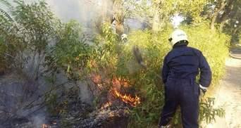 У Києві горить Труханів острів
