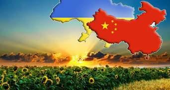 Китай хоче створити з Україною зону вільної торгівлі