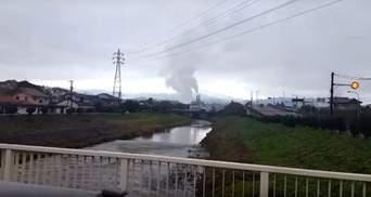 З'явилось відео цунамі в Японії