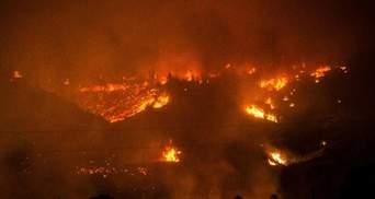 Стихийные пожары в Чили унесли жизни 10 человек: жуткие фото