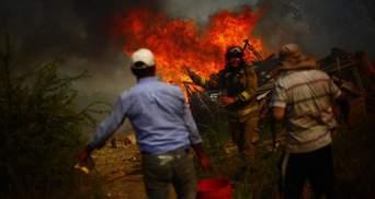 В Чили пламя охватило более полумиллиона гектаров лесов