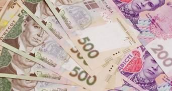 Що купували партії за гроші українців: асортимент вражає