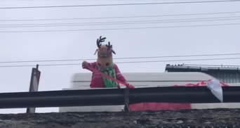В Шулявского моста оказался неожиданный спасатель: смешное видео