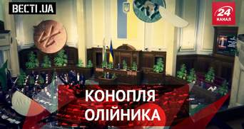 """Вести.UA. Олейника волнует конопля. В """"ДНР"""" выдумали """"границу"""""""