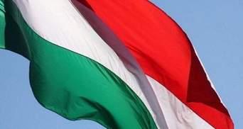 Москаль рассказал, кто осквернил венгерский флаг на Закарпатье