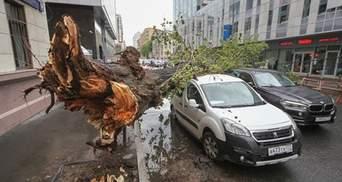 """Москвичів """"забули"""" попередити про потужний ураган"""
