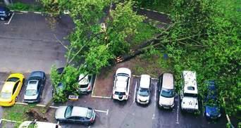 Яку суму збитку завдав ураган у Москві