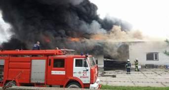 З'явились нові деталі масштабної пожежі під Києвом