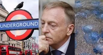 Главные новости 15 сентября: теракт в Лондоне, Лавринович под стражей и нашествие медуз в Одессе