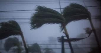 """Жертвами урагана """"Мария"""" стали около 30 человек"""