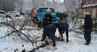 Непогода атаковала Закарпатье: снег, поваленные деревья и обесточивание городов и сел