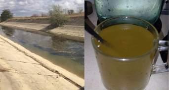 Из кранов в Крыму течет болотная вода, которой скоро не станет вообще: шокирующие фото