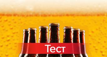 Лагер или эль: что вы знаете о пиве