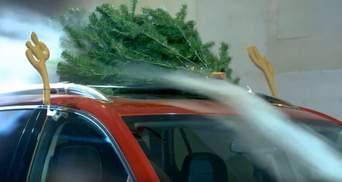 Ялинка на даху авто: наскільки збільшується витрата палива