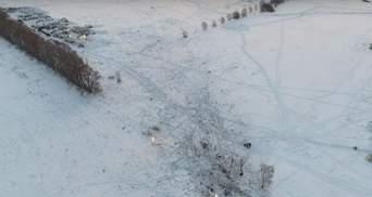 Авиакатастрофа Ан-148: появилось видео с квадрокоптера
