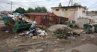 Проблему зі сміттям в окупованому Криму так і не вирішили: кримчани опублікували жахливі фото