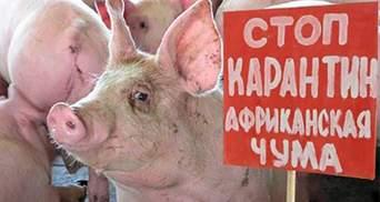 У місті на Одещині оголошено карантин через спалах небезпечної недуги
