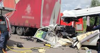 Смертельна ДТП поблизу Житомира: поліція затримала власника маршрутки