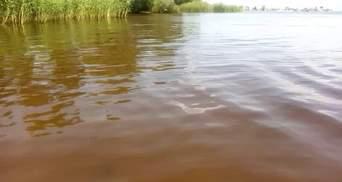 Воды Днепра страдают от редкого, но катастрофического явления