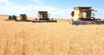 Максим Мартинюк розповів, на чому заробляють аграрії максимальний прибуток