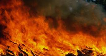 В Кыргызстане введено чрезвычайное положение из-за масштабных пожаров