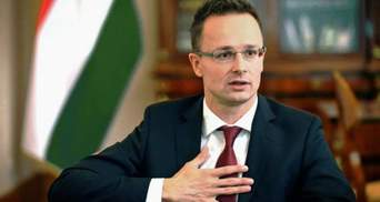 Скандал с венгерскими паспортами на Закарпатье: МИД соседей отреагировал угрозами