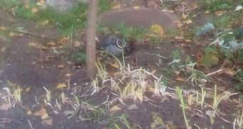 Чому ракета впала на подвір'я школи у Лисичанську: версія військових