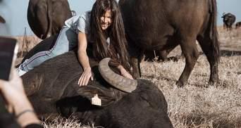 Энергия и драйв: Руслана приручила карпатского буйвола в новой фотосессии