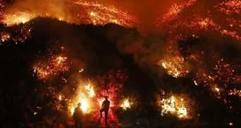 Пожежа у Каліфорнії: кількість жертв збільшилася, Трамп оголосив надзвичайний стан