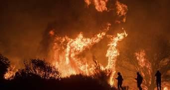 Число погибших в результате лесных пожаров в Калифорнии достигло 42 человек