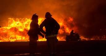 Рай, выгоревший дотла: в масштабных пожарах в Калифорнии сгорел город Парадайз