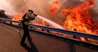 Пожар в Калифорнии: Трамп назвал главную причину возгорания
