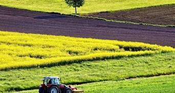 Права на аренду земли теперь можно приобрести на аукционе Prozorro