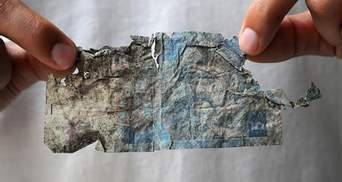 Куда отдавать поврежденные банкноты с нового года: в НБУ дали советы