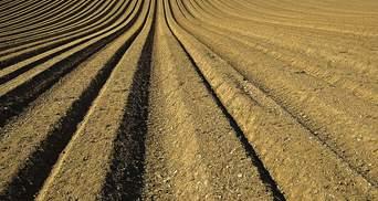 Що означає призупинення дії земельного мораторію: пояснення експерта