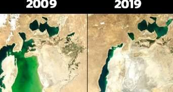 Екологи показали свій #10YearChallenge: як змінилася природа за останніх 10 років