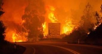 Масштабные стихийные бедствия в разных уголках планеты: как люди спасаются от непогоды