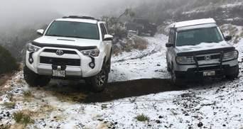Аномальные морозы в США: Гавайи неожиданно засыпало снегом (фото, видео)
