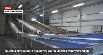 """Агрохолдинг """"Авангард"""" прошел сертификацию на соответствие продукции стандарту """"Халяль"""""""