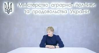 Ринок землі в Україні: в уряді розповіли, як планують його запускати