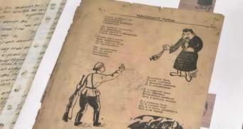 Уникальные документы УПА нашли в пчелином улье на Тернопольщине: фото и видео