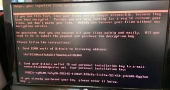 Шквал десятків мільйонів кібератак звалився на Еквадор після позбавлення Ассанжа притулку